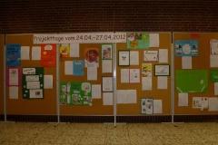 2012-projektewoche08